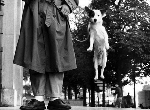 Paryžius, 1989, Elliott Erwitt